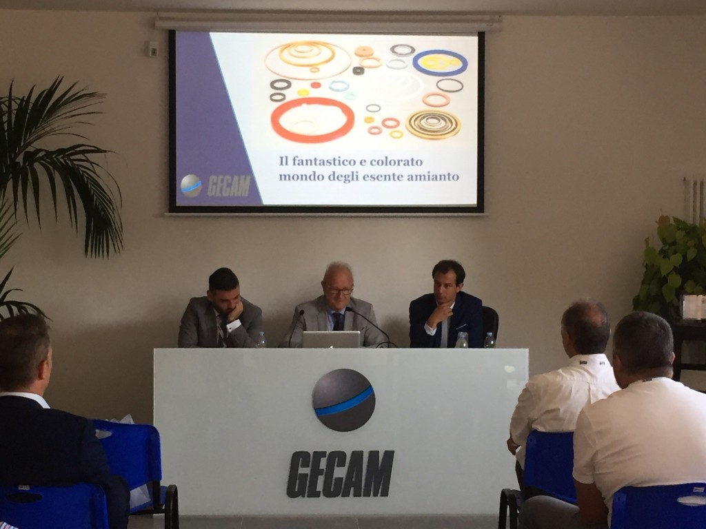 Gecam - Discussione dei temi trattati